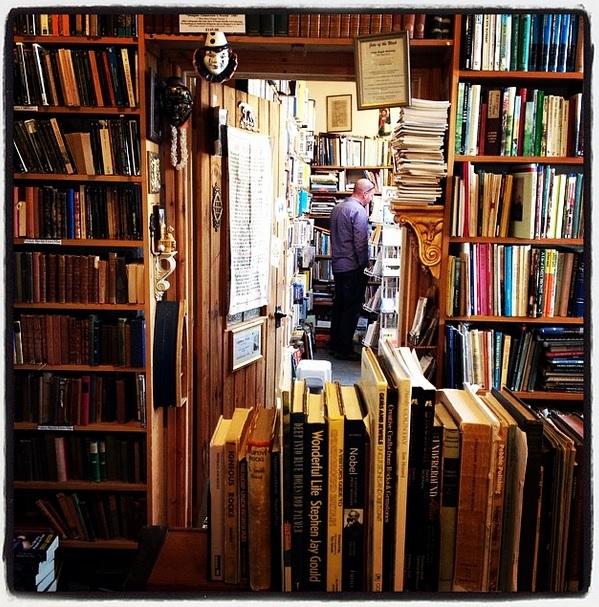 A bookshop in Lyme Regis